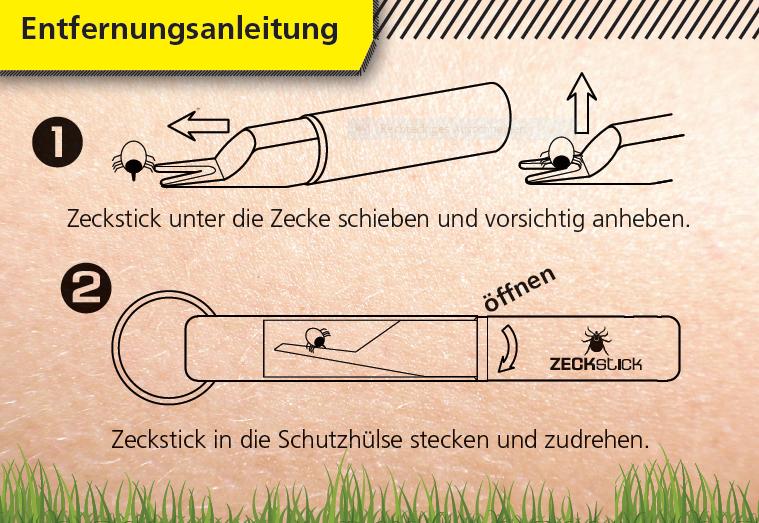 Zeckenstick 3